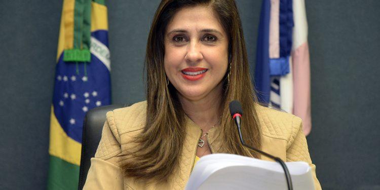 Lei de Raquel Lessa estadualiza estrada entre São Gabriel e Águia Branca